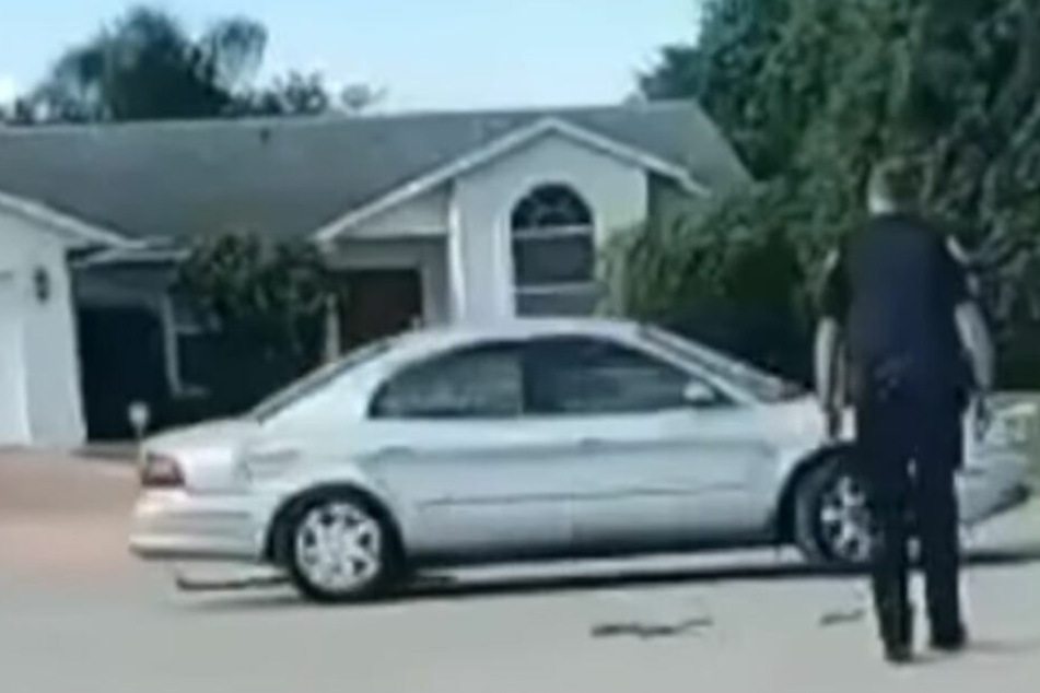 Der Hund saß in diesem Wagen, mit dem er eine halbe Stunde rückwärts im Kreis fuhr.