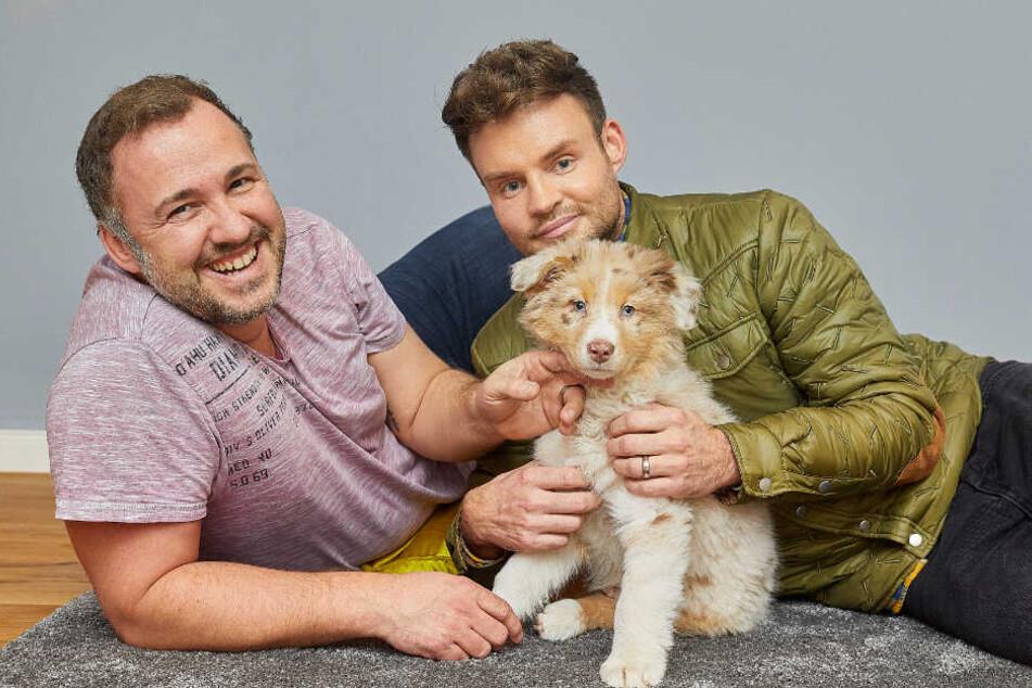Tierischer Nachwuchs: MDR-Moderator ist auf den Hund gekommen