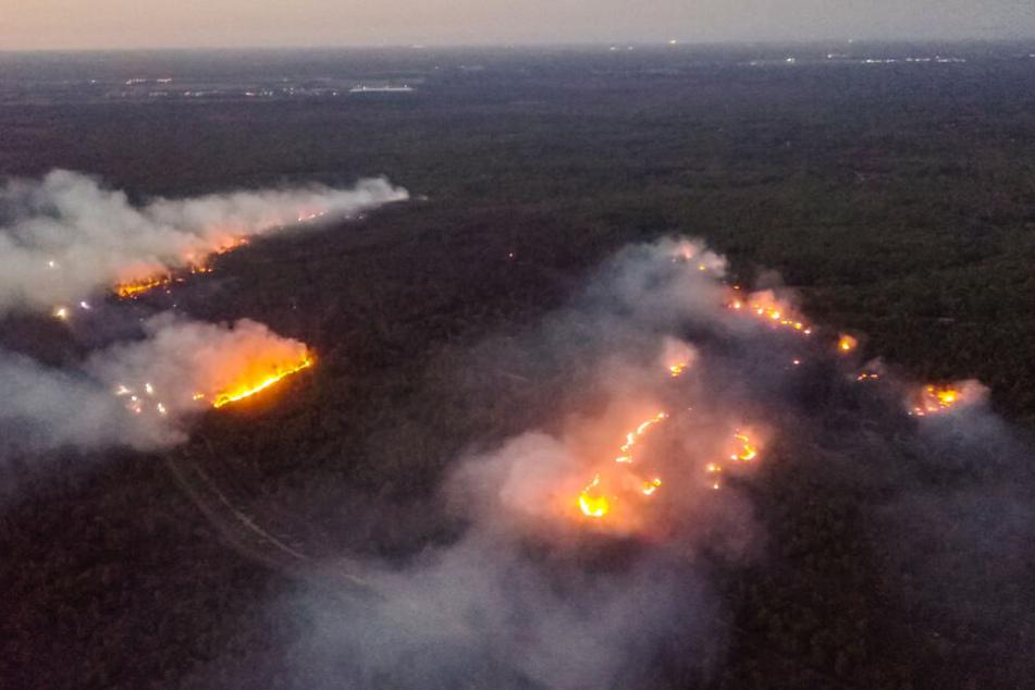 Der Wald auf dem ehemaligen Truppenübungsplatz bei Jüterbog steht in Flammen.