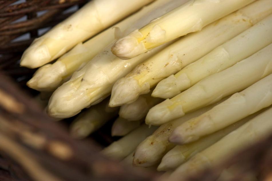 Feinschmecker können ab Mitte April mit Beelitzer Spargel rechnen.