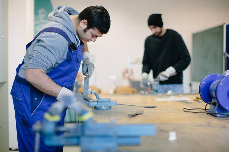 Nur einige hundert der13.600 arbeitslosen Flüchtlinge in Mitteldeutschland wurden bislang vermittelt.