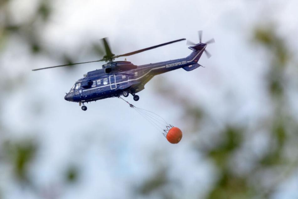 Ein Hubschrauber der Bundespolizei transportiert Löschwasser zum Brandherd.