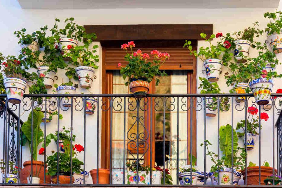 Do it yourself: Balkonverschönerung leicht gemacht