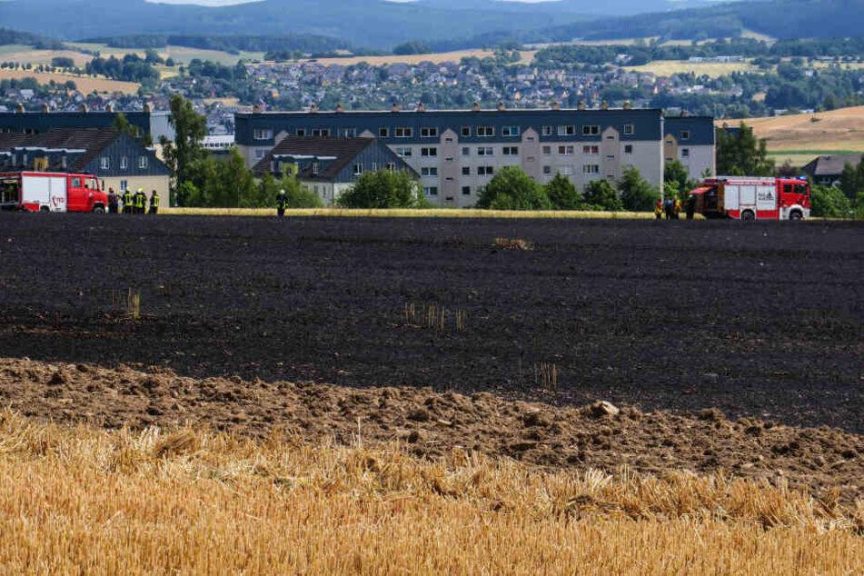Wieder ein Brand: Feld im Erzgebirge in Flammen