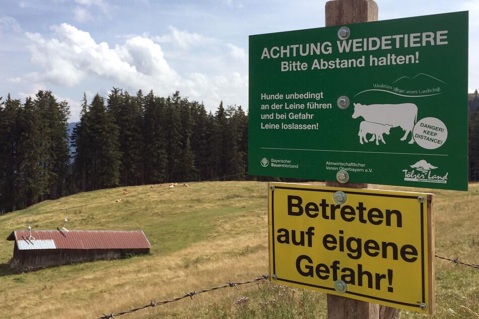 """Almwiesen sind """"belagert mit Picknickdecken"""": Bauern in Sorge"""