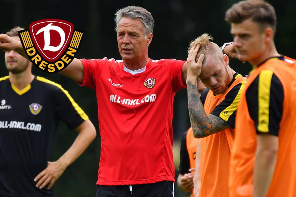 Neuhaus tüftelt: Spielt Dynamo bald mit Belgien-Taktik?