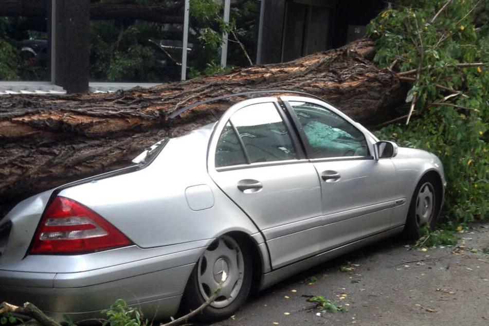"""Am 9. Juni 2014 sorgte Sturmtief """"Ela"""" für zahlreiche Schäden in Düsseldorf und anderen NRW-Städten."""