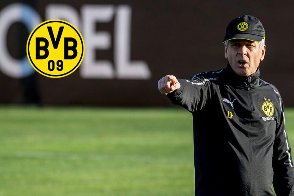 Angeblich fix: BVB verpflichtet argentinisches Top-Talent!