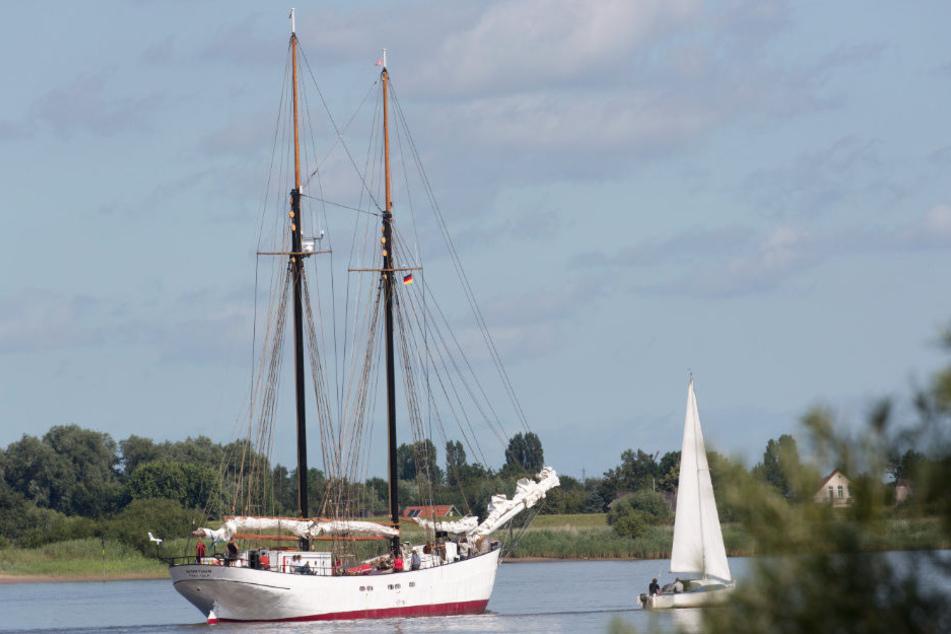 """Der Segler """"Avontuur"""" ist mir kostbarer Fracht aus Südamerika nach Hamburg gekommen. (Archivbild)"""