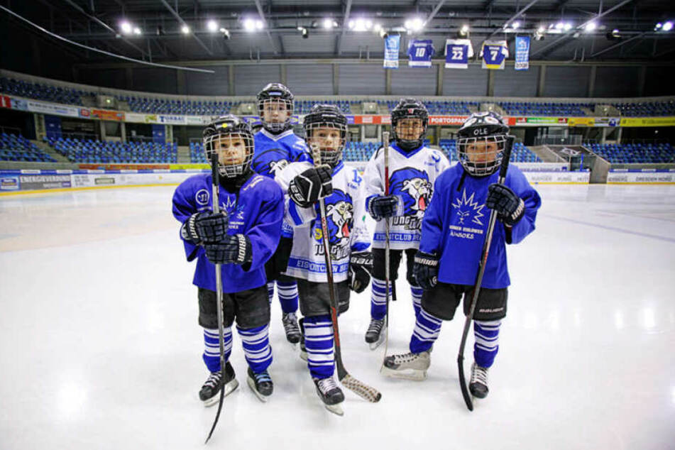 Insgesamt 50 Nachwuchs-Eislöwen besuchen die Sport-Grundschule.