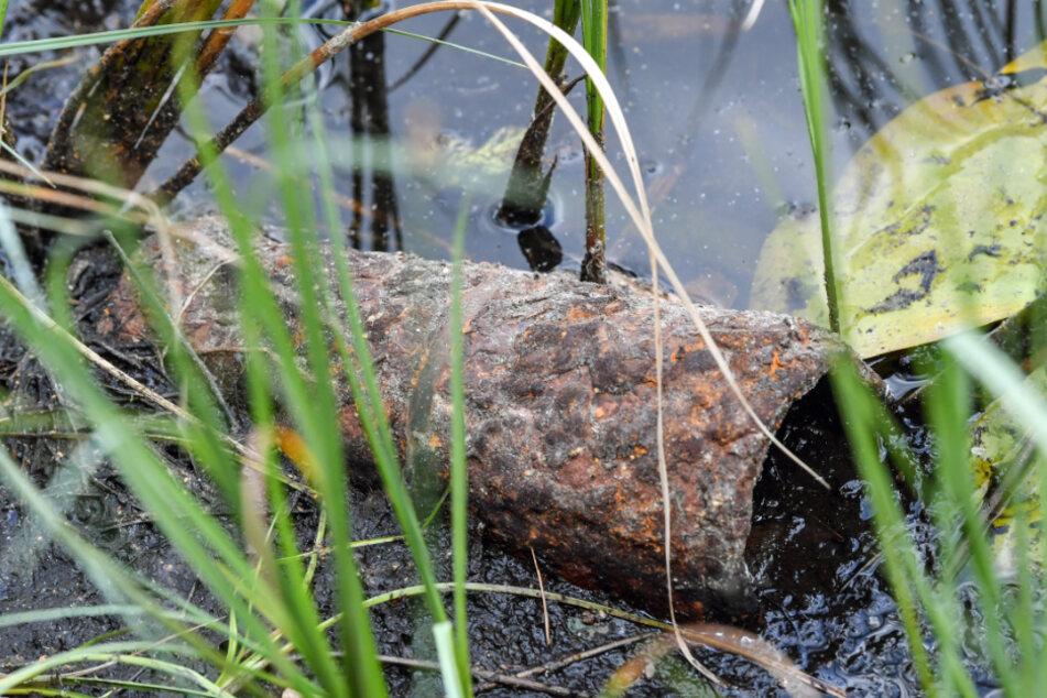 Der Sportverein fand eine Granate aus dem Zweiten Weltkrieg. (Symbolbild)
