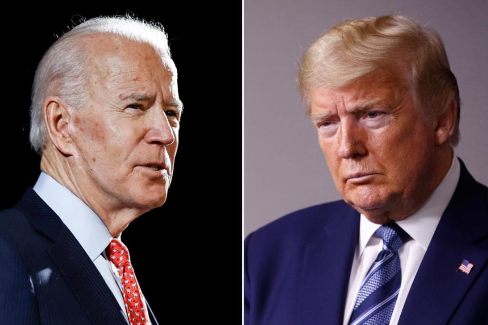 """Donald Trump wettert gegen Joe Biden: """"Kann keine zwei Sätze zusammenfügen"""""""