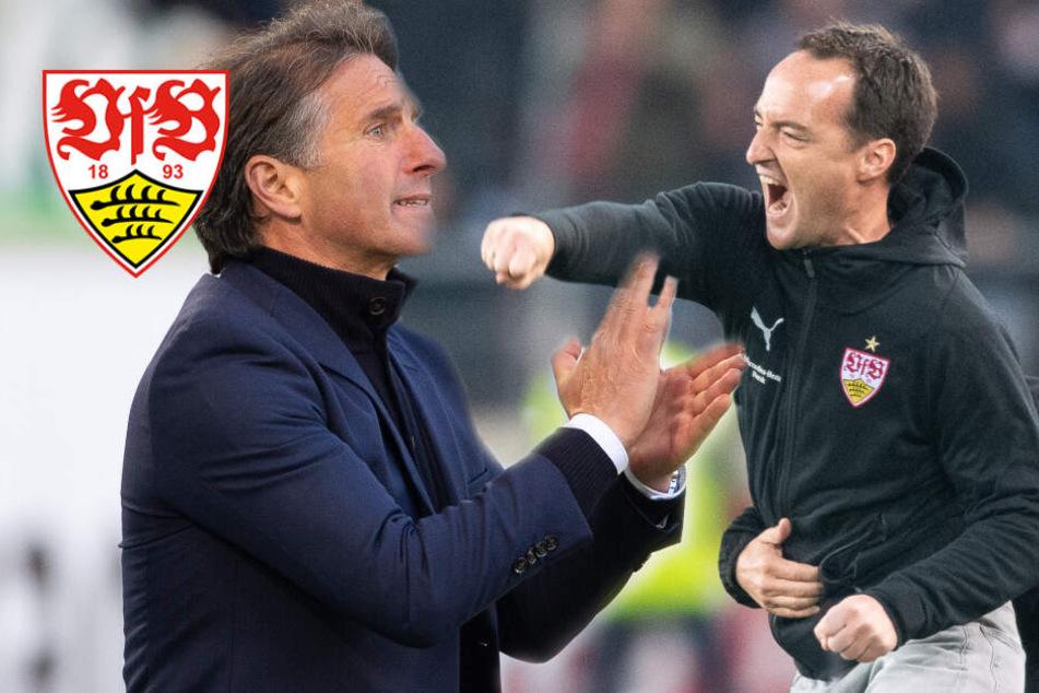Nach dem Walter-Beben: Das sind mögliche neue Trainer für den VfB Stuttgart