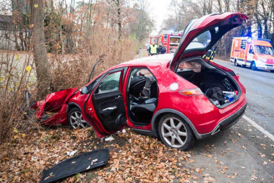 Mit voller Wucht schepperte der Honda gegen einen Baum.