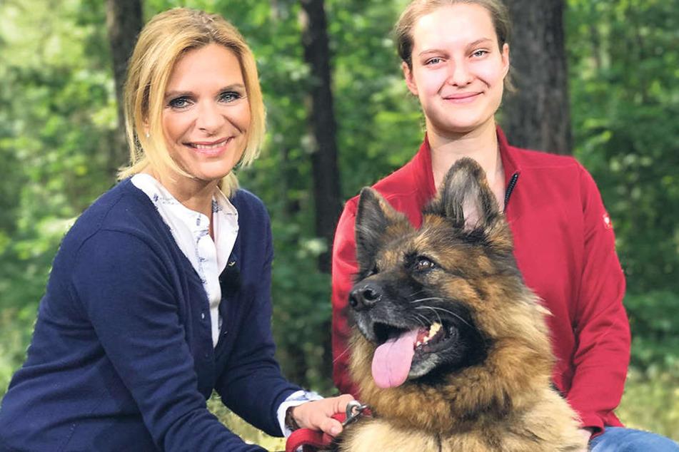 Uta Bresan (l.) sucht ein neues Zuhause für Tessy. Die Schäferhündin lebt  derzeit im Tierheim Vielauer Wald und wird liebevoll von der Auszubildenden  Saskia Kreysig betreut.