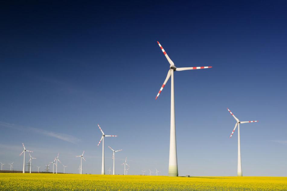 Strom aus erneuerbaren Energien sorgt für bis zu 90 Prozent weniger CO2 Emissionen (Symbolfoto).