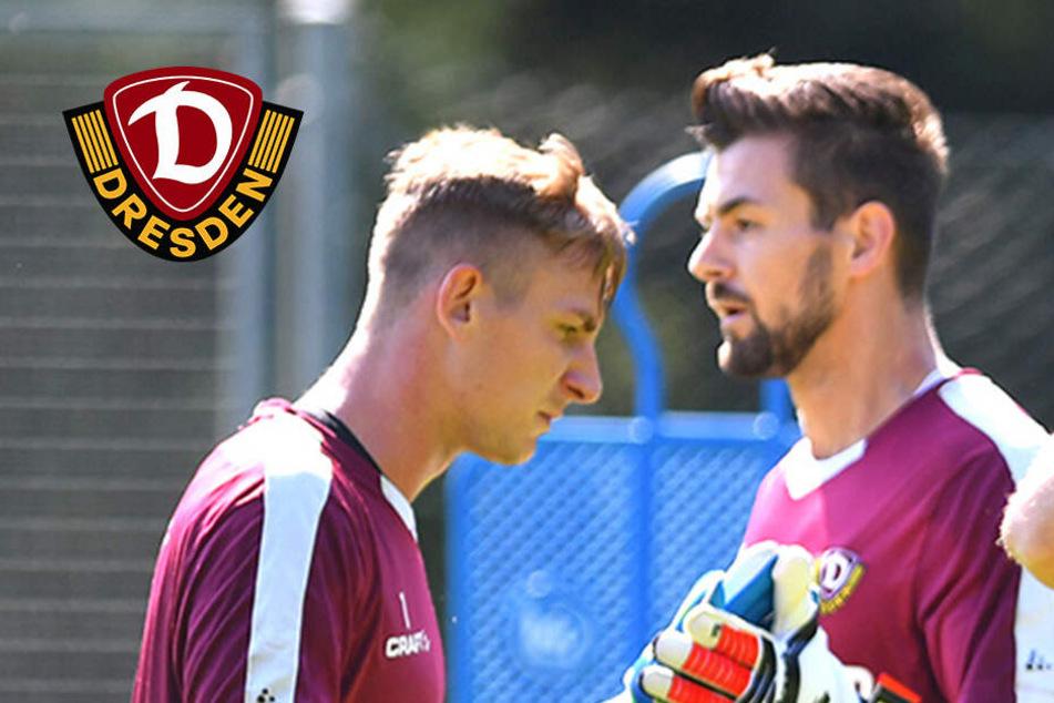 Broll, Boss oder Wiegers: Wer wird Dynamos neue Nummer eins?