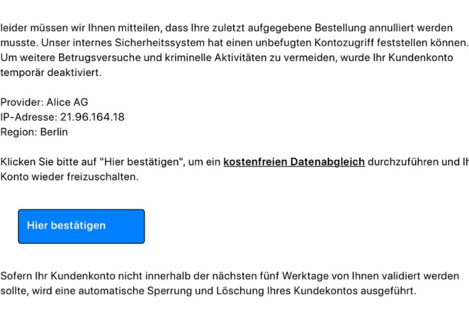 """Über den """"Hier Bestätigen""""-Button erreicht man ein Eingabefeld, wo Mail-Adresse und PayPal-Passwort abgefragt werden."""
