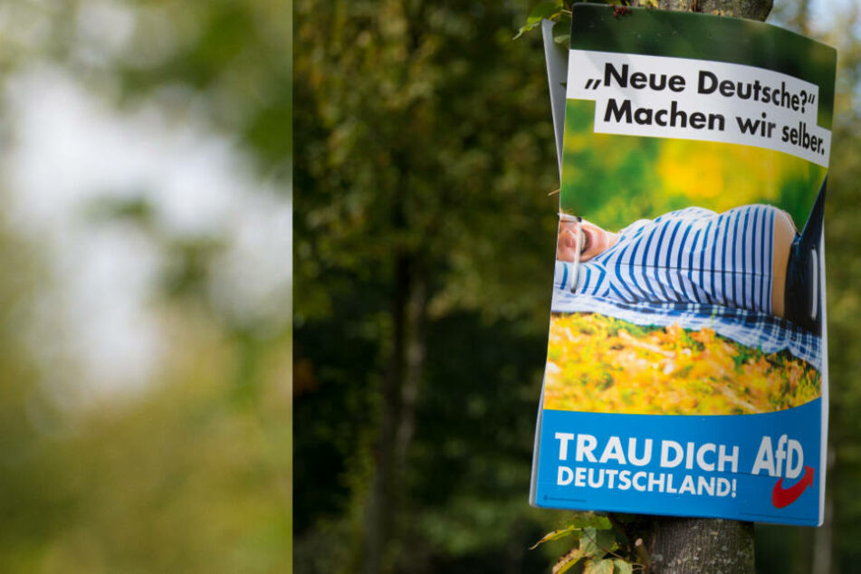 Junge Männer-Gang zerstört 16 Wahlplakate in Leipzig