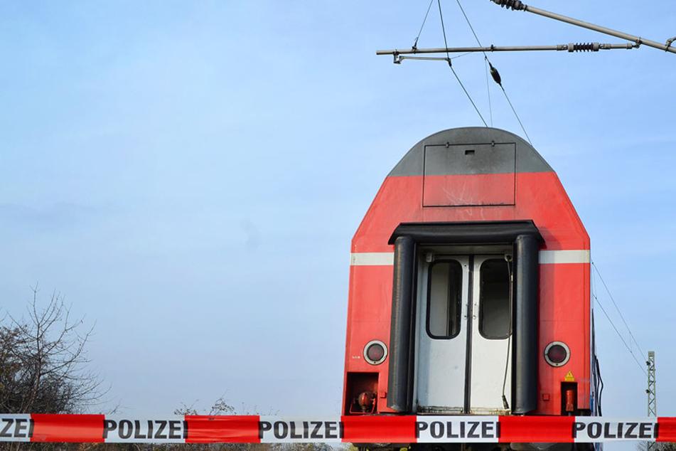 Die Jugendlichen waren auf einen abgestellten Zug geklettert. (Symbolbild)