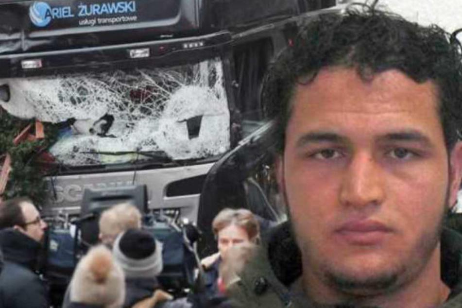 Terror in Berlin: Amri-Komplize hatte Kontakt zum Drahtzieher der Anschläge von Paris!