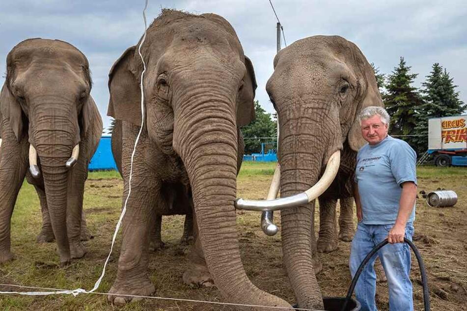 Zirkus-Direktor Hardy Weisheit findet, dass er seine Tiere fair behandelt.
