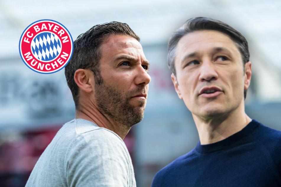 """""""Es ist Derby"""": FC Bayern beim 1. FC Nürnberg gefordert"""
