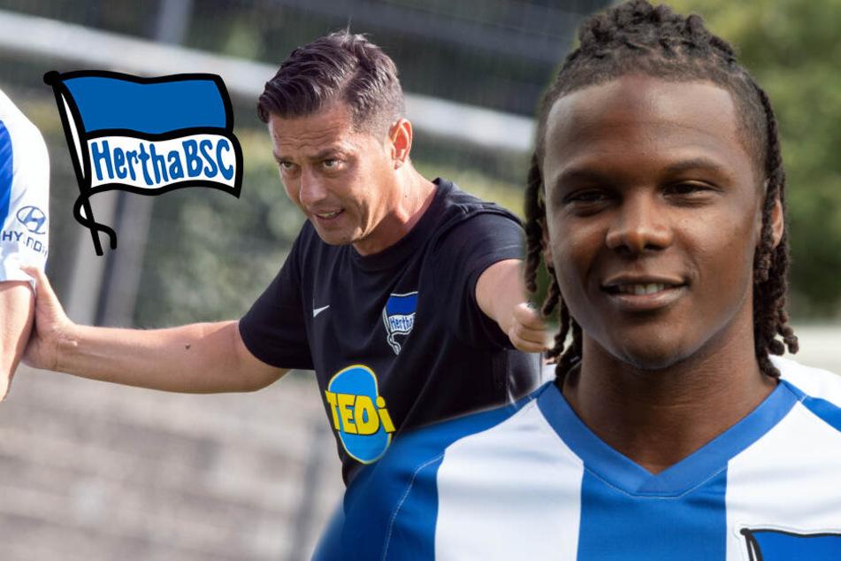 Hertha-Trainer Covic bremst Erwartungen bei Neuzugang Dedryck Boyata