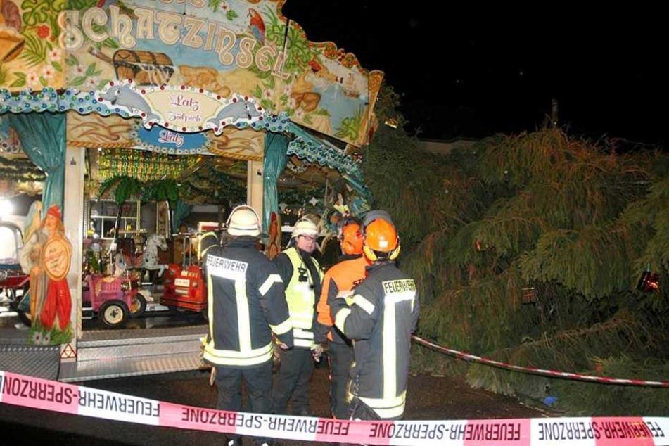 In Eschweiler (NRW) hat der Sturm einen 15 Meter hohen Baum umgerissen.