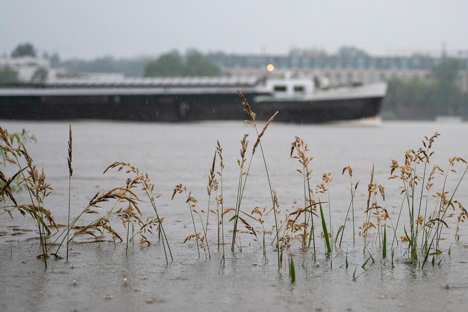 In Wiesbaden ist der Rhein am Dienstagmorgen bereits über die Ufer getreten.