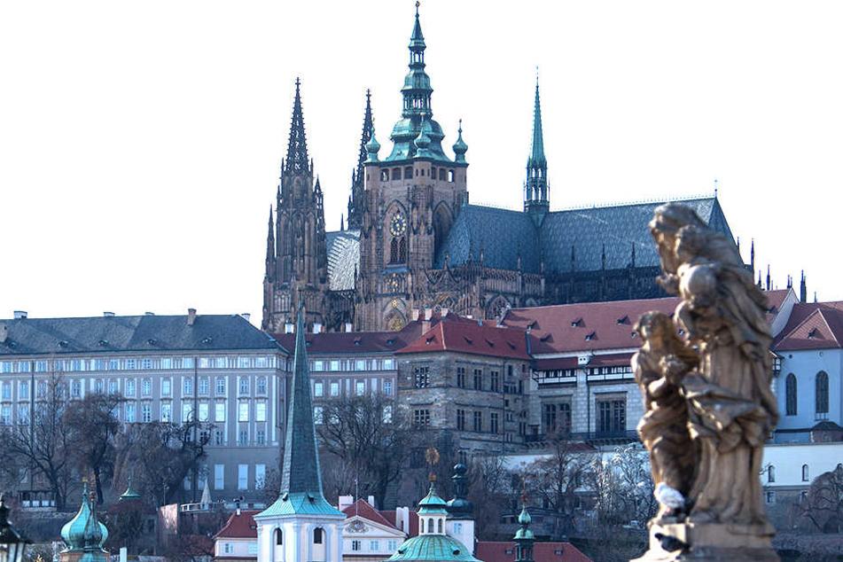 51 Prozent der Befragten Tschechen würde eine muslimische Familie mit Kindern in ihrer Nachbarschaft stören.