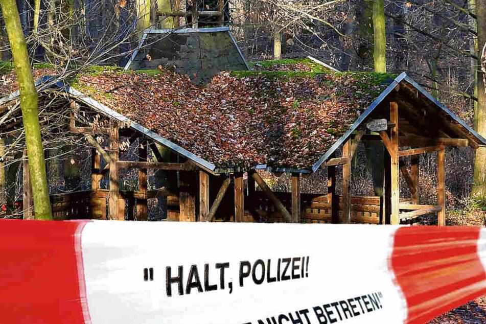Nach Vergewaltigungs-Vorwurf: Mann (29) in Stadtwald bei Leipzig niedergestochen