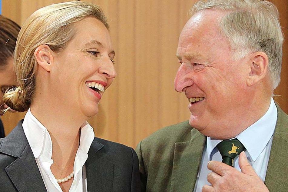 Lachende Gesichter beim AfD-Führungsduo Alice Weidel (38, links) und Alexandeer Gauland (76, rechts).