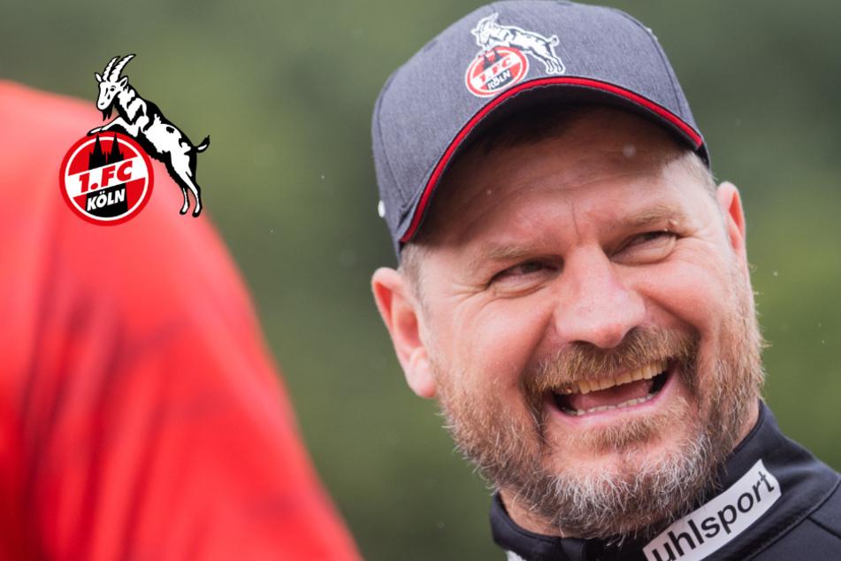 """Köln-Trainer Baumgart gewappnet: """"Klar, das Ergebnis kann auch böse ausgehen"""""""