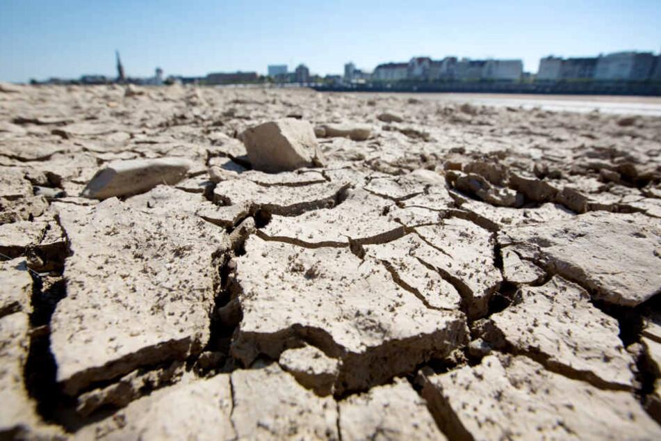 Lage immer kritischer: Nächster Stadt in Deutschland droht Trinkwasser-Not