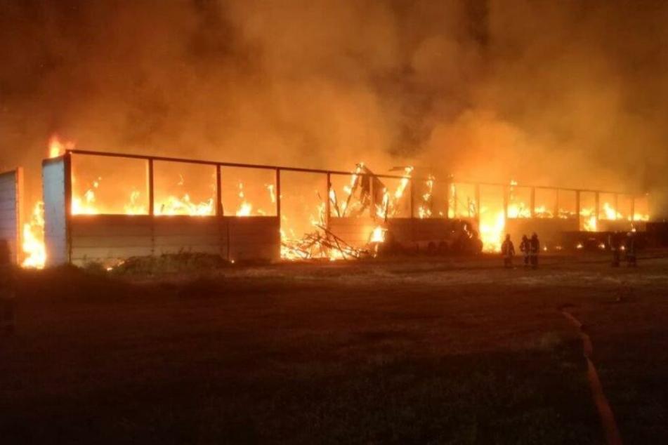 Brandstiftung? Lagerhalle brennt komplett aus