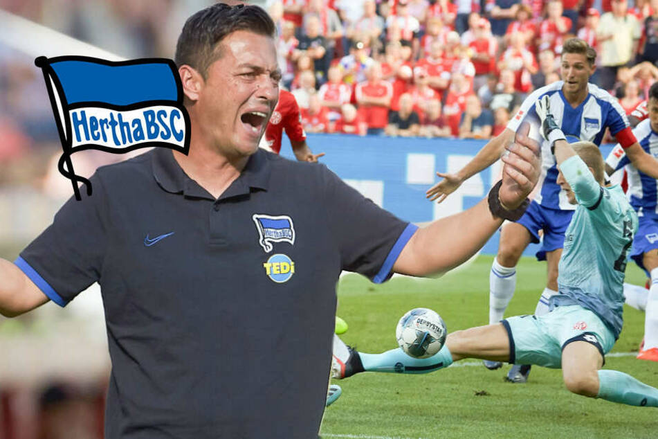 Covic unter Druck: Darum steckt Hertha in der Krise