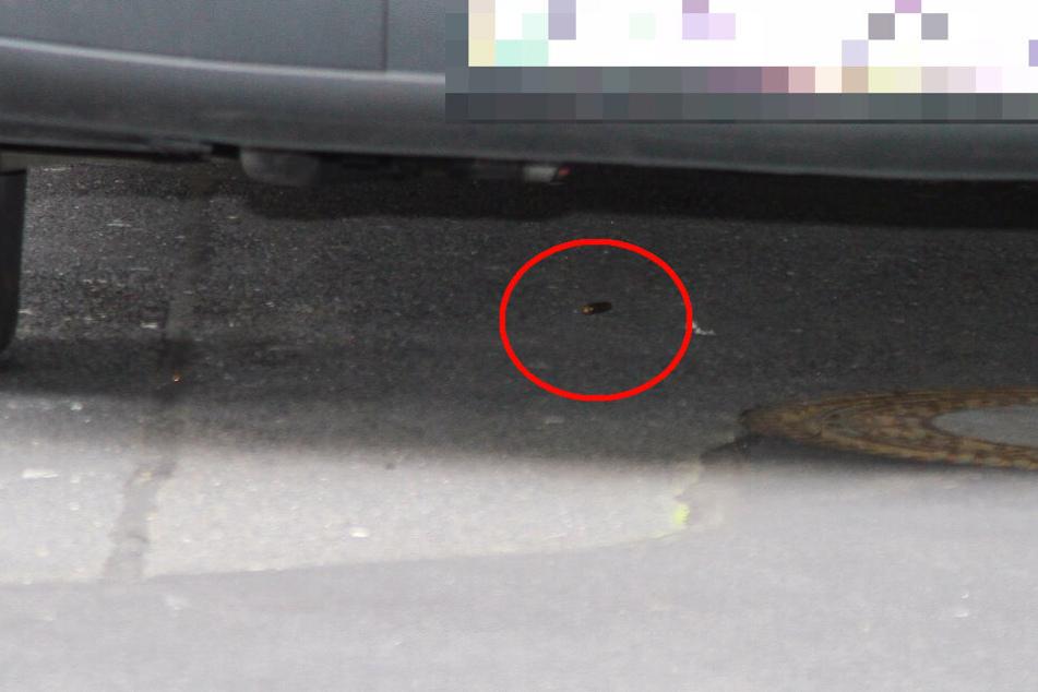 Die Hülse einer Patrone, mit der auf den verletzten Wachmann geschossen wurde.