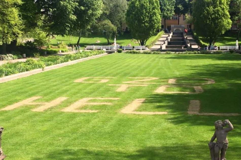 Linksradikale ruinieren Wiese in historischem Park mit Säure