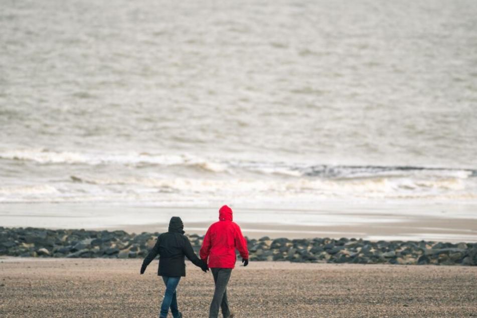 Grusel-Fund am Strand von Norderney! Touristen stoßen auf Schädel
