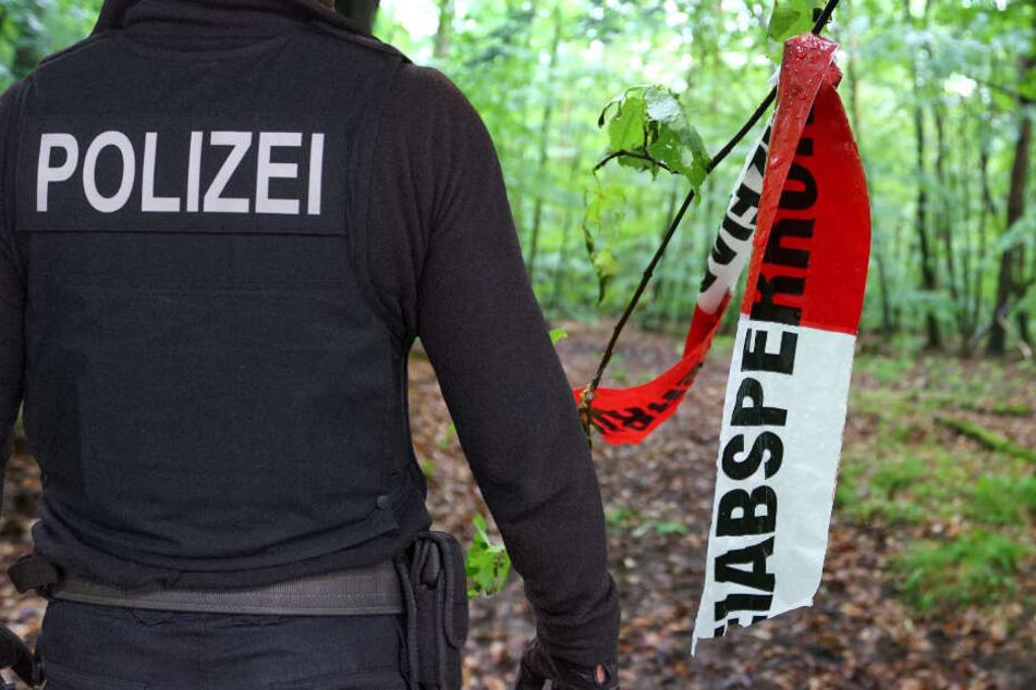Die brutale Attacke ereignete sich in einem Waldgebiet in Südhessen. (Symbolbild)