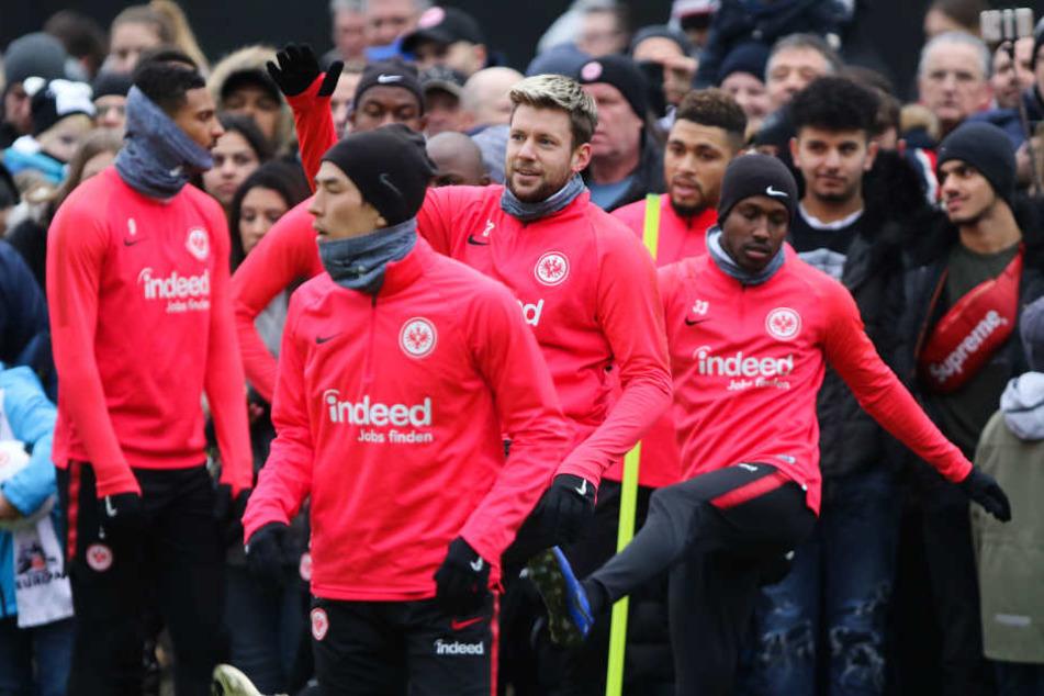 Nicht zuletzt auch aufgrund der hervorragenden Leistungen in der Europa League sicherte sich die Frankfurter Eintracht den Titel als größte Überraschung der Hinrunde.
