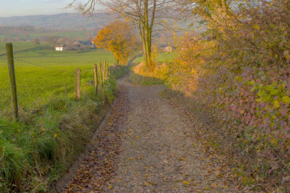 Mann radelt auf Feldweg entlang, plötzlich stellen sich ihm Vermummte in den Weg