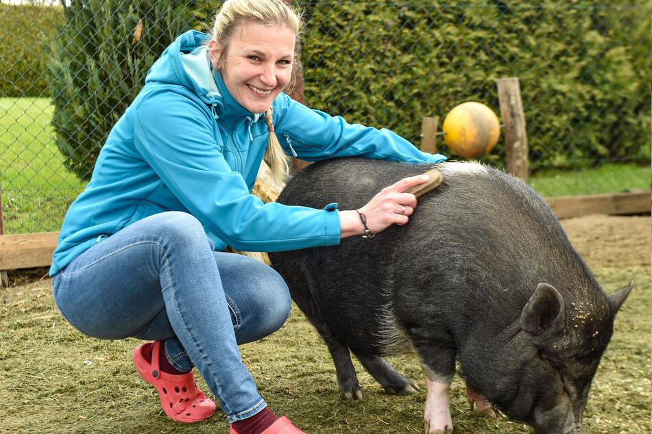 Nicole Hoffmeister (42) und ihre Familie trennen sich schweren Herzens von ihren Schweinchen.