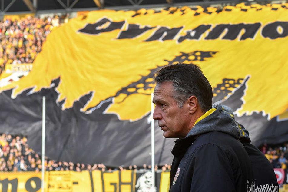 Auch auswärts kann sich Dynamo-Trainer Uwe Neuhaus auf eine  schwarz-gelbe Wand freuen.
