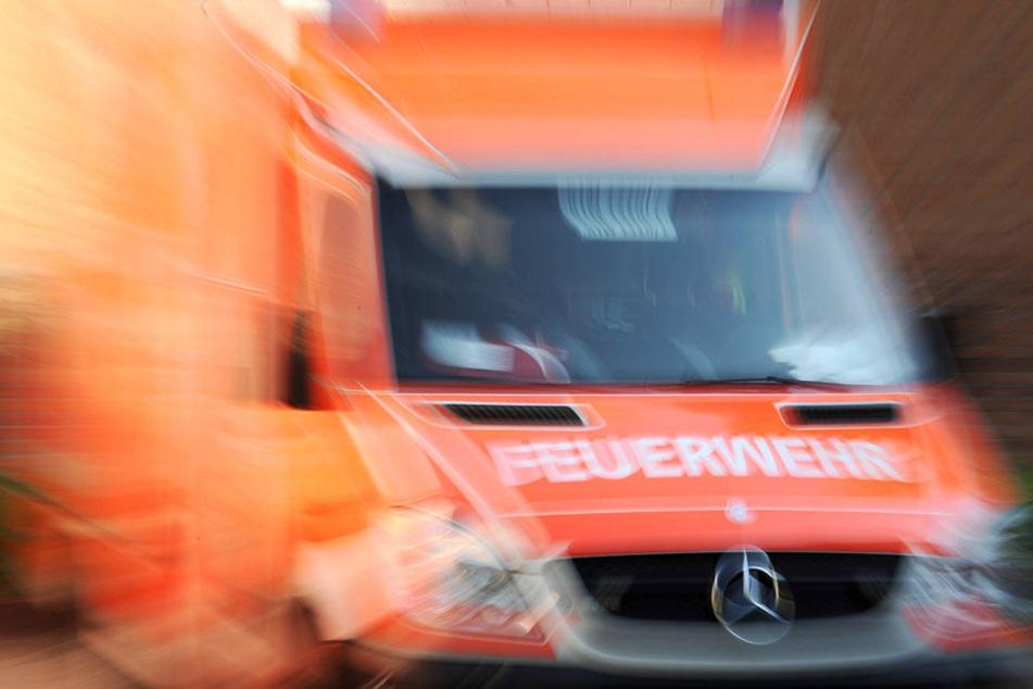 Die Feuerwehr fuhr die Brüder schwer verletzt ins Krankenhaus (Symbolbild).
