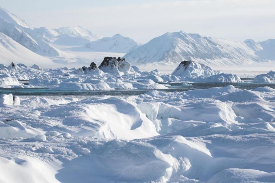 In der Arktis wurde eine merkwürdige Formation entdeckt.