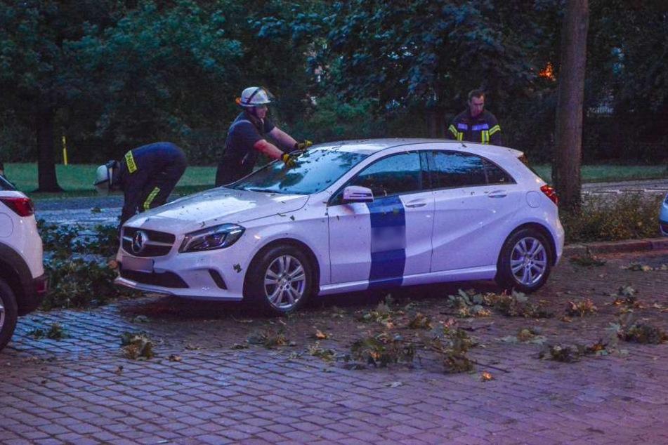 In Magdeburg stürzte ein mehrere Meter langer Ast auf diesen geparkten Mercedes und verpasste ihm mehrere Dellen. Verletzt wurde niemand.
