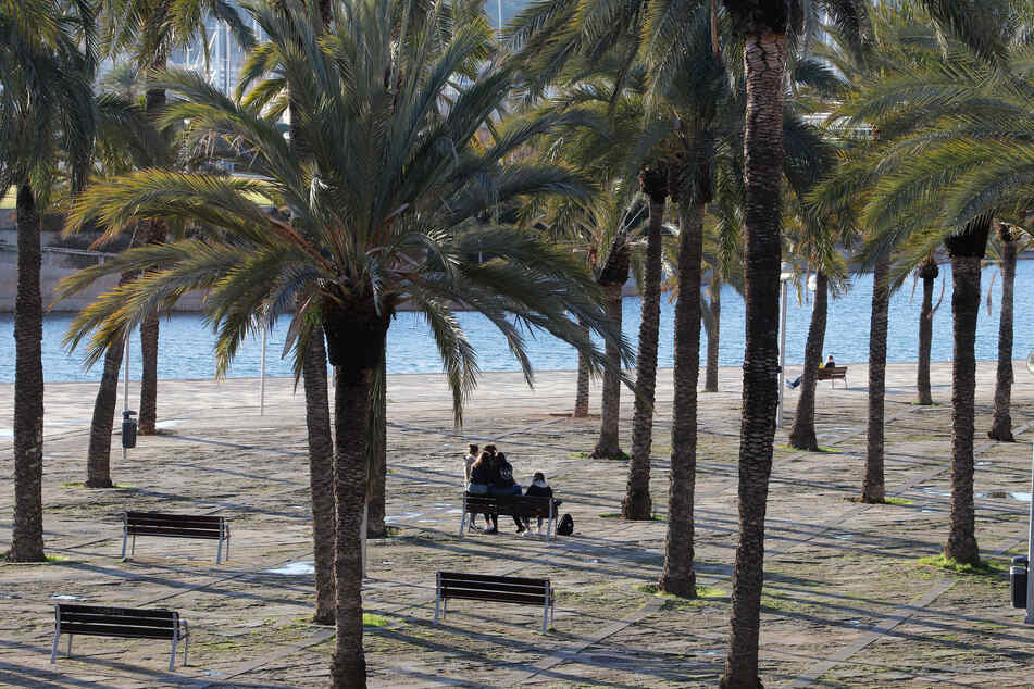Menschen sitzen in einem Park in Palma, Spanien. Bald sind in Mallorca bis auf wenige Ausnahmen keine privaten Treffen mehr erlaubt.