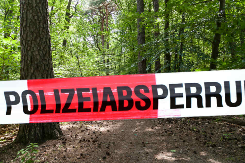 Ein Mann auf einem Baum hat am Mittwoch in Leipzig einen Polizeieinsatz ausgelöst. (Symbolbild)